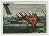 Kentrosaurus - Dinosaurs: The Mesozoic Era (Trading Card) # 36 - Redstone Marketing 1993 Mint