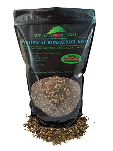 Tropical Bonsai Soil Mix - Professional Sifted and Ready to Use Tree Potting Blend in Easy Zip Bag - Akadama, Black Lava, Pumice & Pine Bark