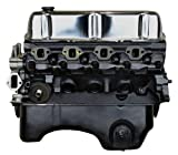 PROFessional Powertrain VF14 Ford 302 Complete Engine, Remanufactured