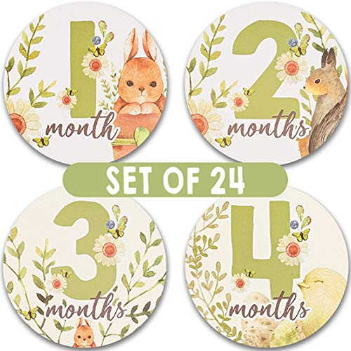 24 Baby Monthly Milestone Stickers - Beautifully Illustrated Baby Month Stickers For Baby Girl & Boy - 12 Month by Month Newborn Milestone Belly Sticker - Infant Monthly Birthday Stickers For Pictures