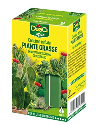 DueCi Piante Grasse Fiale, Giallo, 28.50x18.60x20.60 cm