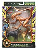 Alien Collection Special Edition - Xenomorph Runner - Fully Poseable Figure 7 inch