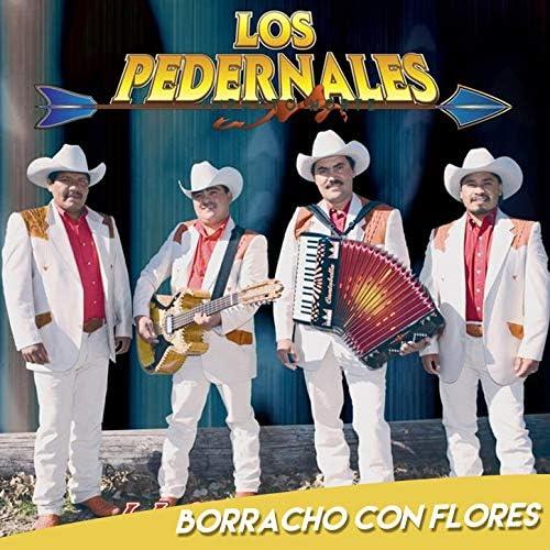 Los Pedernales