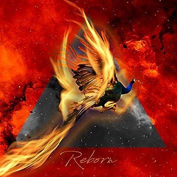 Reborn (feat. Noize)