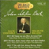 Bach Cantatas Vol.47