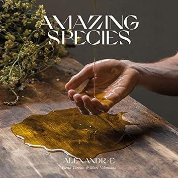 Amazing Species
