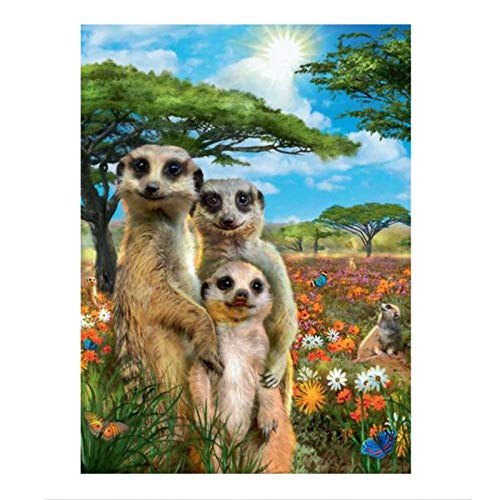 KBIASD Meerkat Family Full Square Drill 5D DIY Diamond Painting Embroidery Cross Stitch Mosaic Home Decor Gift- 30x40cm unframed