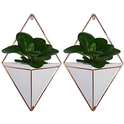 Starall 2 stücke Trigg Wandvase & Geometrische Deko – Übertopf Für Zimmerpflanzen, Sukkulenten, Luftpflanzen,Kunstpflanzen und Mehr, Keramik/Messing (White, S+L)