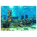 Hffheer Acuario Fondo subacuático Etiqueta Adhesiva Papel Pintado Adhesivo de Doble Cara Pecera Imágenes Decorativas Fondo subacuático Imagen Decoración(76 * 46cm)
