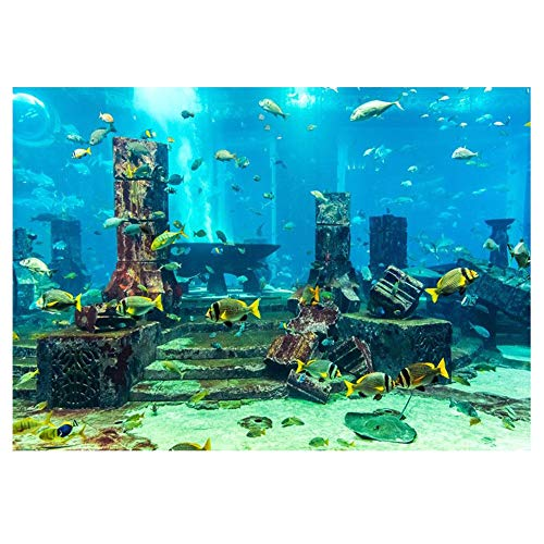 Aquarium Poster Aquarium Rückwandfolie Unterwasserwelt Aquarium Hintergrund Tropische Fische Aquarium Wandaufkleber PVC Selbstklebende Dekor Wandpapier Aquatic Underwater Coral Decor (122 * 46cm)