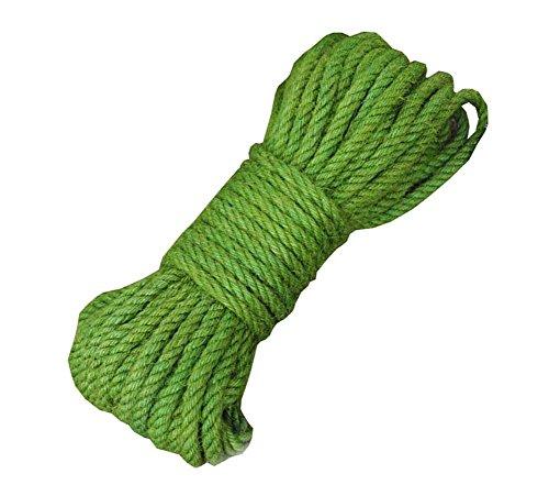 Corde 100% Naturelle de Chanvre de Couleur (8mm), 20 mètres (65 pi) pour Le Cadeau de décoration de Bricolage, Vert