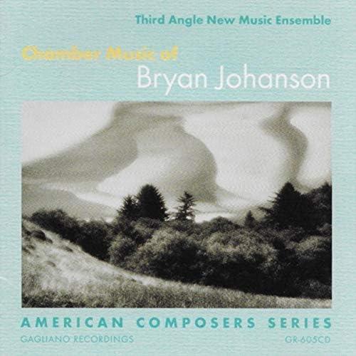 Third Angle New Music Ensemble