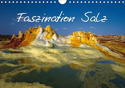Faszination Salz (Wandkalender 2021 DIN A4 quer)