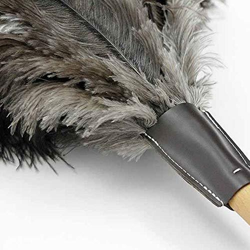 Andrée Jardin exclusieve plumeau met stijl, 70 cm, beukenhout en struisvogelveren