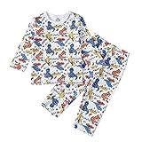 Baby nest ベビー服 パジャマ 上下2点セット 長袖 赤ちゃん 肌着 女の子 子供服 室内着 ルームウェア 寝間着 通園通学 コットン ドラゴン 80cm 9-12ヶ月