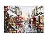 Bordado Paris Street Diamond Square Round Diamond Painting Punto de cruz Set Decoración para el hogar DIY 5D Diamond Sting 30x45cm