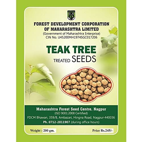 Maharashtra Forest Seed Centre Teak Wood Tree Seeds 200