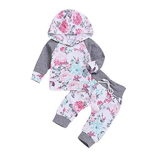 Sunday Baby Kleidung Mädchen Kleinkind Blumen Hoodie Oberseiten Hosen Outfits Set 2pcs Baby Kleidung Set Mädchen Kleidung Outfits 6-24 Monate