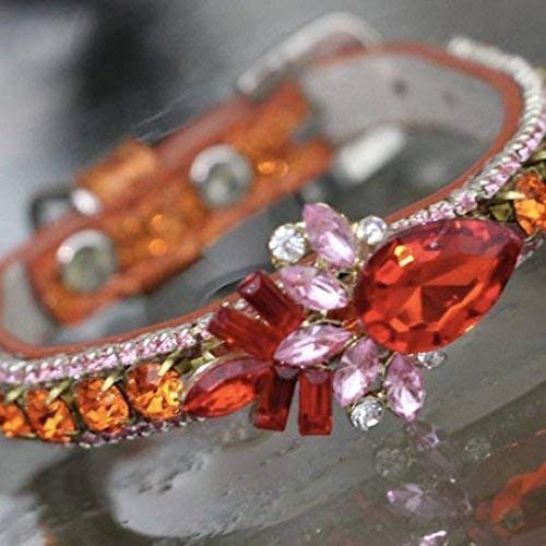Carnelian Orange Rhinestones With Ruby Red and Clear Diamante Diamond Flower Crystals Sizes XS- 3XL Dog Collars USA Rockstar Pet Collars TM Dog Pet Jewelry Collar Necklace