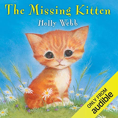 The Missing Kitten copertina