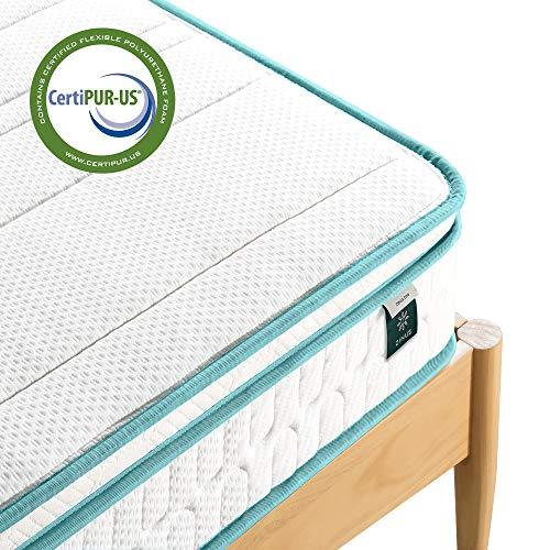 Zinus 8 Inch Memory Foam Spring Hybrid Mattress/Euro Top Innerspring Mattress/Green Tea-Infused Foam/CertiPUR-US Certified/Mattress-in-a-Box, Queen