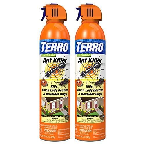 Terro T1700SR 19 oz Outdoor Ant Killer Spray-2 Pack, White