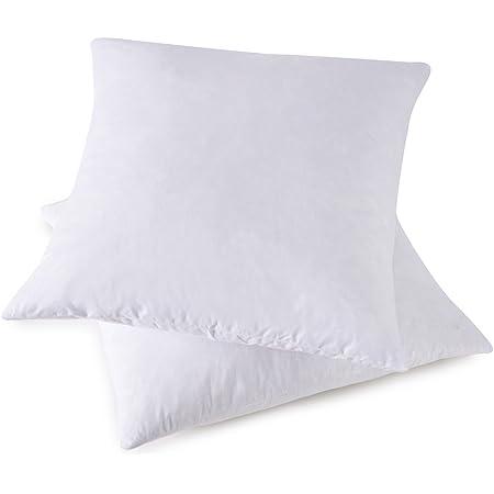 Amazon Com Homesjun Set Of 2 Feather And Down Pillow Insert 12x12 Square Decorative Throw Pillow Insert 100 Cotton White Home Kitchen
