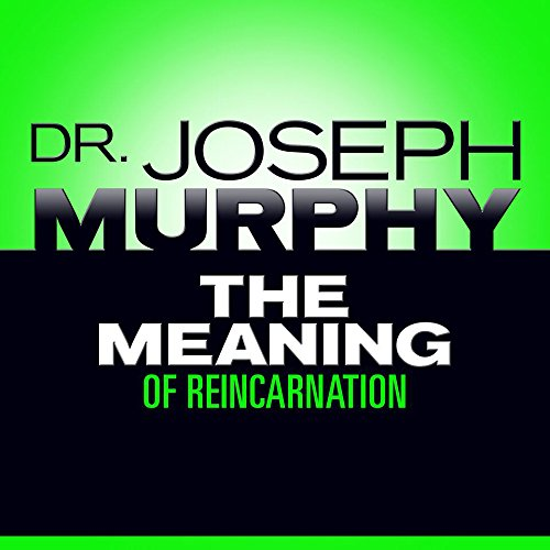 The Meaning of Reincarnation audiobook cover art