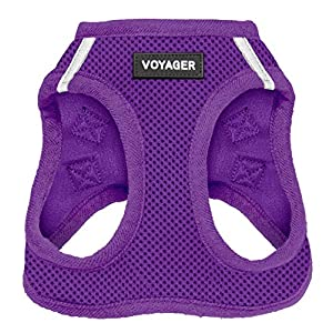 Voyager Step-in Air Dog Harness – All Weather Mesh, Step in Vest Harness for Small and Medium Dogs by Best Pet Supplies – Purple (Matching Trim), S (Chest: 14.5-17″) (207T-PPW-S)
