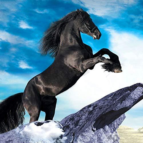 Lazodaer - Kit de pintura de diamante para adultos, niños, decoración de casa, habitación, oficina, regalo para ella, caballo negro, 30 x 30 cm