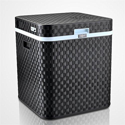 48L 12V DC 220V AC refrigeración refrigerador Calefacción Mini Hogar pequeño mini coche de doble uso de la nevera Frigorífico El frigorífico Tamaño externo: 45 * 45 * 52cm tamaño interno: 33,5 * 33,5