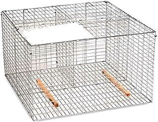 Pest-Stop Galvanised Steel Larsen Cage for Birds
