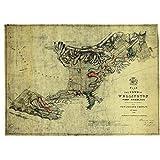New Zealand Company plan of Wellington Travel Classic Wall
