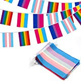 Anley 32pcs Assorted Rainbow String Flags - 4 Mixed Flag Banners with LGBT, Pansexuality, Bisexuality, and Transgender - Individual Flag of 8' x 5.5'(8 Flags per Each Kind)