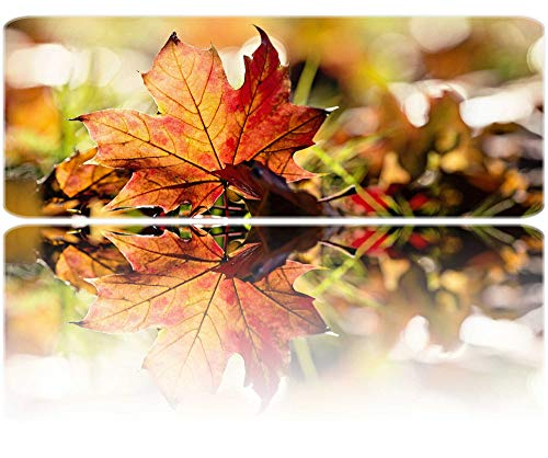 PigBangbang,Autumn Leaf in The Warm Sunlight Wonderful Season Non-Skid Rubber Base Ultra-Smooth Surface Gaming Mouse Pad (31.5 X 11.8) Stitched Edges