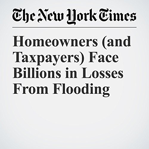 Homeowners (and Taxpayers) Face Billions in Losses From Flooding copertina