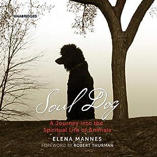 Soul Dog audiobook cover art