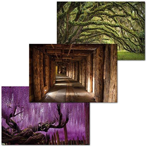 GREAT ART Set of 3 XXL Posters with Child Motifs - Mystical Places - Poland Salt Mine Wieliczka Wisteria Tree Oak Forest Interior Mural Decoration 140 x 100 cm