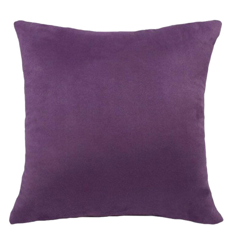 モルヒネ男性谷枕カバー クッションカバー 無地 ベルベット 装飾 洗える ソファー/ベッド/車 飾り - パープル, 45x45cm