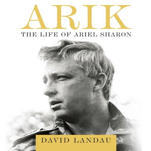 Arik audiobook cover art