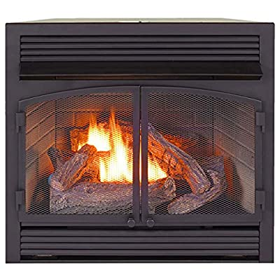 ProCom Heating Dual Fuel Ventless Fireplace Insert - 32,000 BTU, Remote Control, FBNSD400RT-ZC from Procom