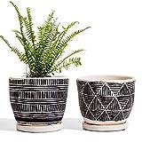 LE TAUCI Cement Planter, Flower Pot 5.5 Inch, Boho Plant Pots with Drainage Holes & Saucers, Indoor Plants, Bonsai Pots, Medium, Unglazed, Set of 2