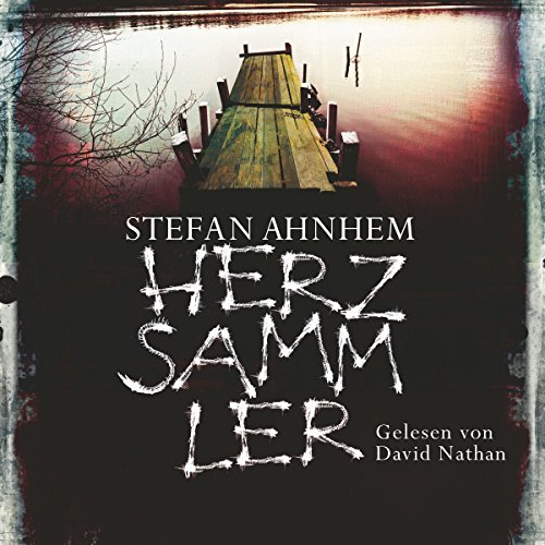 Herzsammler (Ein Fabian-Risk-Krimi 2) audiobook cover art