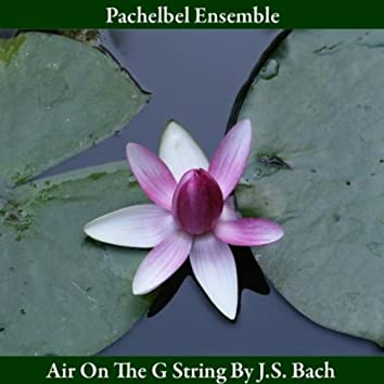 Air On the G String, from Orchestral Suite in D Major, BWV 1068