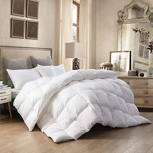 Dorrin Nessin Luxury King Size Hungarian Goose Down Comforter Duvet Insert,...