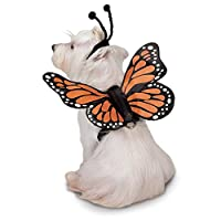 (L) - Pet Edg Butterfly Dogs Glow Harness Costume, Large