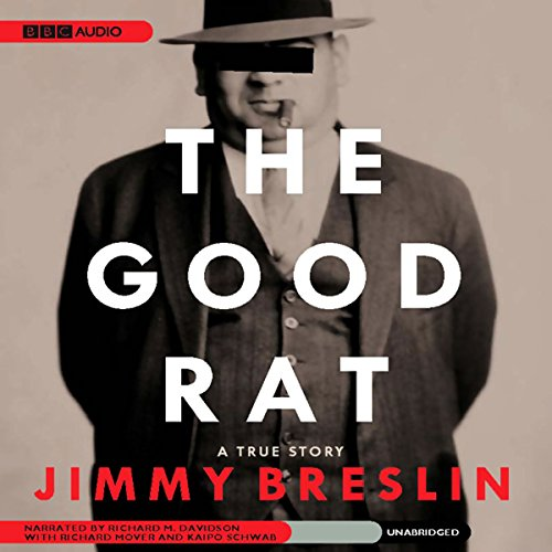The Good Rat audiobook cover art