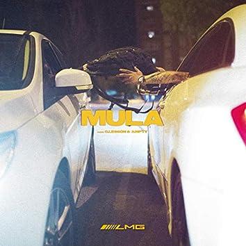 Mula (feat. G.Lesson & 3mpty)