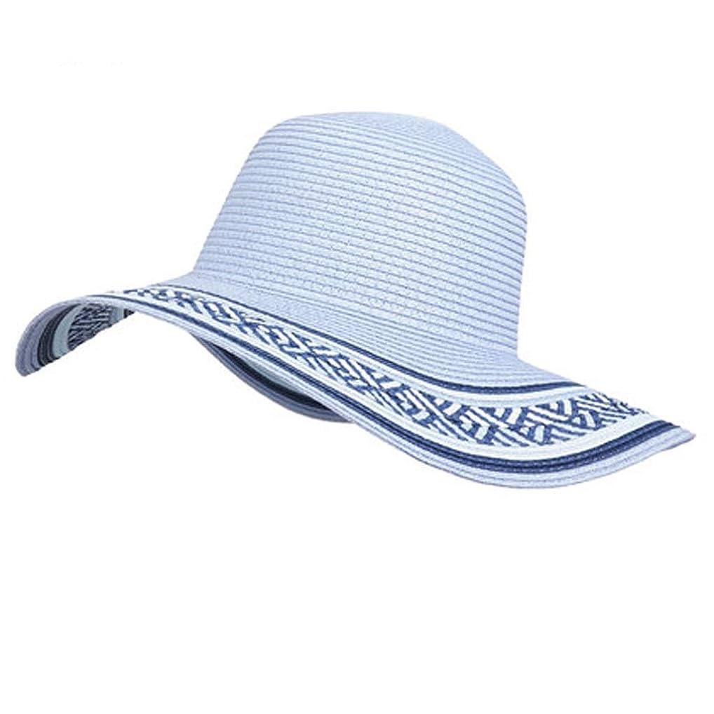 会話慈善本能ZFDM 大きな帽子レトロ麦わら帽子ビーチ帽子日焼け止めバイザー調節可能な折りたたみ (Color : Snow blue)