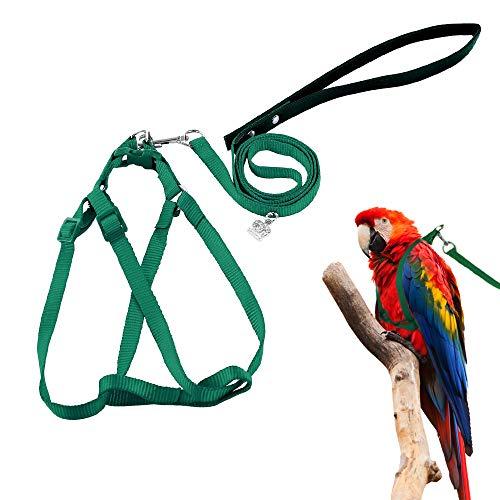 ASOCEA Verstellbares Feder-Geschirr und Leine für kleine bis mittelgroße Papageien (groß)